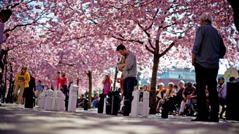 Jouer échecs au printemps à Stockholm